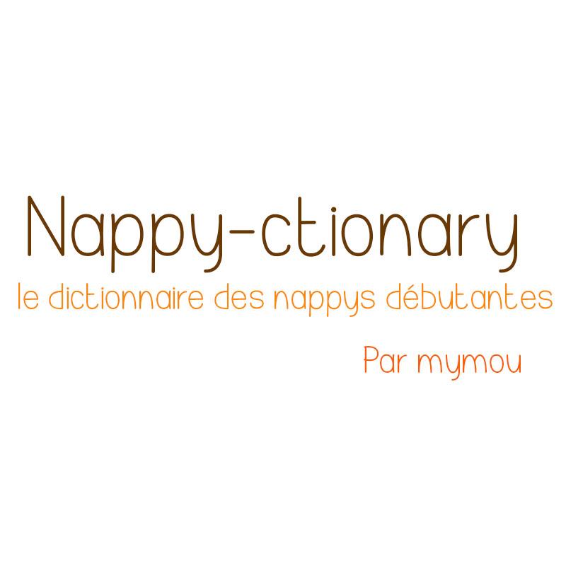 dictionnaire des naturelles termes nappe