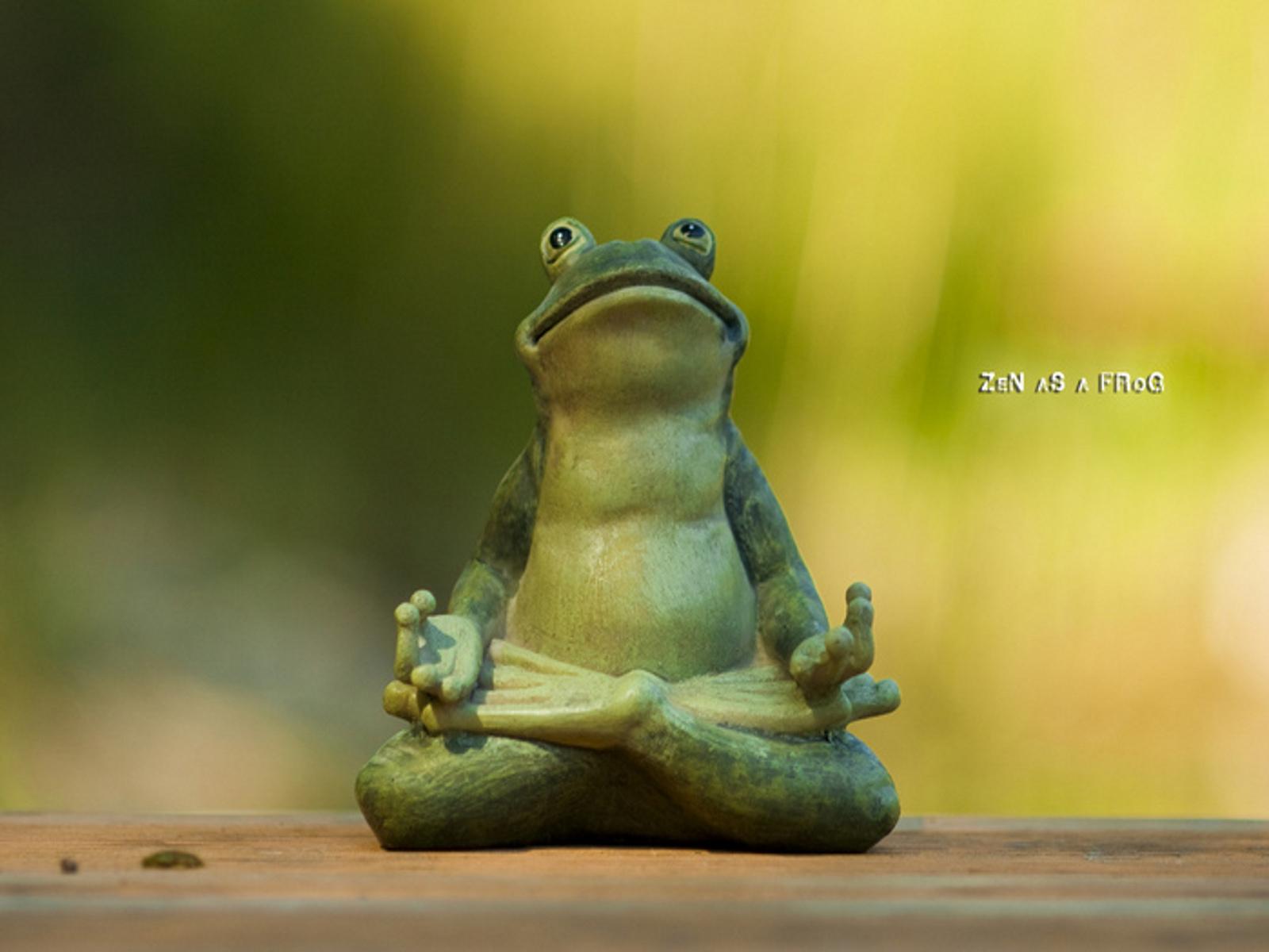 Zen as a frog ;)