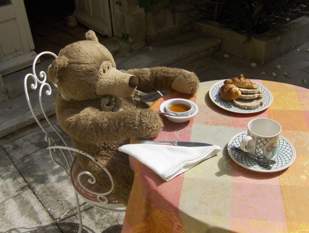 Même les nounours ont droit au petit-déjeûner (photo prise ici)