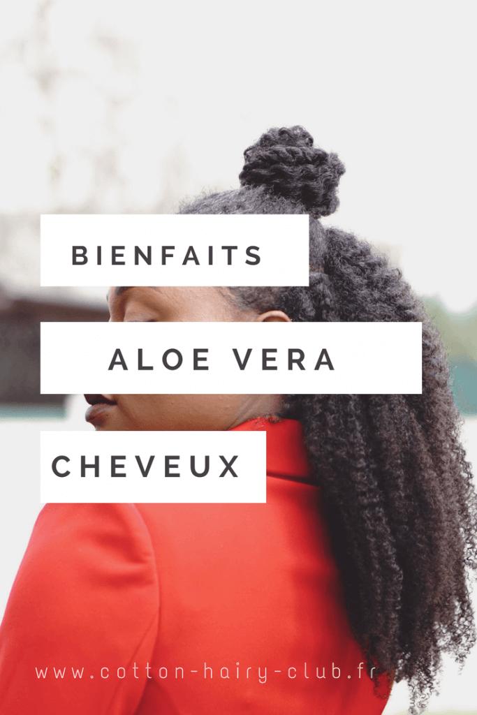 les bienfaits de l'aloe vera pour les cheveux crépus